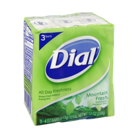 Dial All Day Freshness Mountain Fresh Antibacterial Deodorant Soap Bars - 3 CT