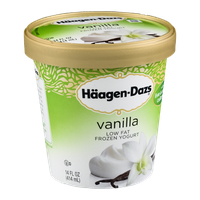 Haagen-Dazs Low Fat Frozen Yogurt Vanilla