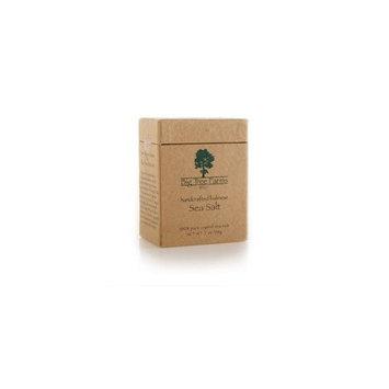 Balinese Sea Salt - Big Tree Farms - 8.5oz Box (Fine Grain)