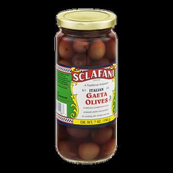 Sclafani Gaeta Olives Italian