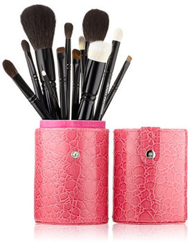 Lazy Perfection by Jenny Patinkin 12 Brush Complete Collection with Pink Case