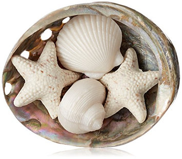 Gianna Rose Seashell Soaps in a Pearlized Shell Dish