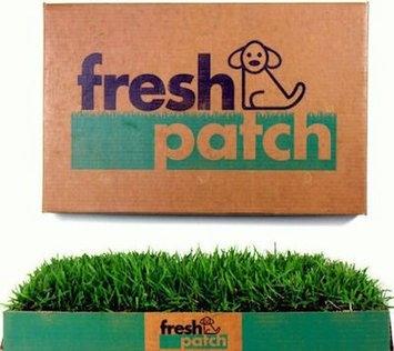 Fresh Patch Dog Potty