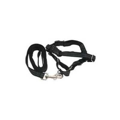 Premier Pet Products Premier Reflective Easywalk Harness Small/Medium Black With 3/4X6 Leash