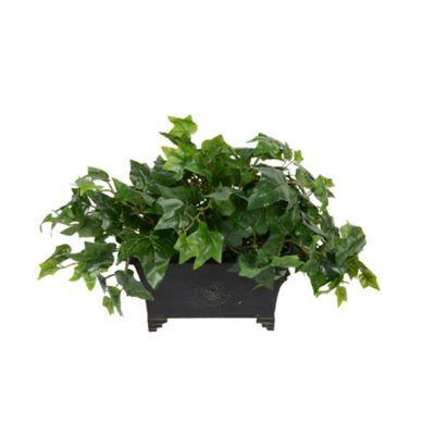 Plantertech - Ledge Box Bluetooth Music System - Ivy