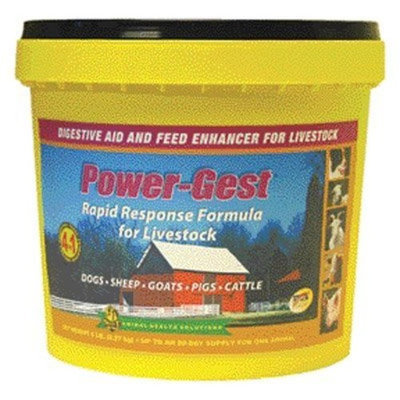 Richdel Inc Select-the-best Powergest Digestive Aid - 5 lbs