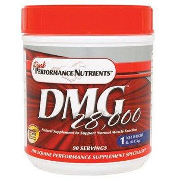 DMG 28000 - 1 LB