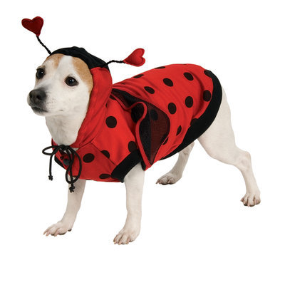 Rubies Ladybug Costume
