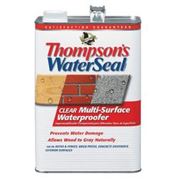 Thompson's WaterSeal 1-Gallon Clear Multi-Surface Waterproofer TH.024101-16