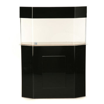 Clear-for-life Clear For Life Flat Back Hexagon Aquarium Black, Size: 100-Gal (60W x 18D x 20H in.)