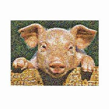 Photomosaics Pig Jigsaw Puzzle Ages 8+