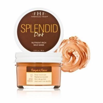 FarmHouse Fresh FarmHouse Fresh Splendid Dirt Mud Mask - Pumpkin Puree - 3.25 fl oz