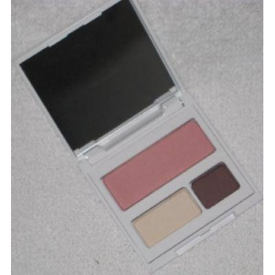Clinique Red Apple Palette Travel Exclusive Eye Shadow