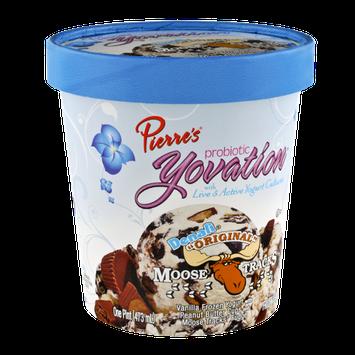 Pierre's Probiotic Yovation Denali Original Moose Tracks Frozen Yogurt
