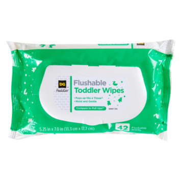 DG Baby DG Toddler Flushable Toddler Wipes, 42 ct