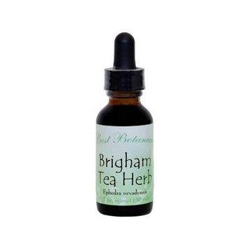 Best Botanicals Brigham Tea Herb Extract 1 oz.