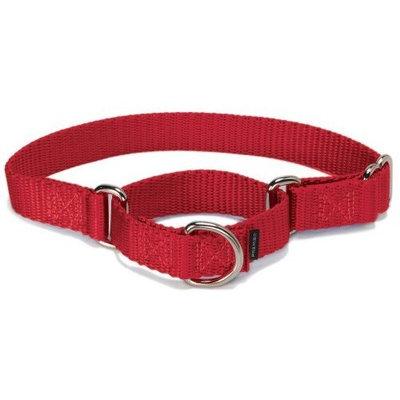 Premier Pet Premier Collar, 3/8