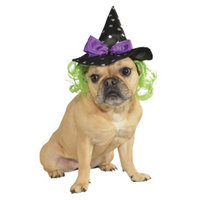 Rubie's Witch Hat Hair Pet Costume - S/M