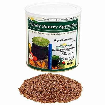 Organic Hard Red Wheat Seed: 5 Lb - Handy Pantry Brand - Grow Wheatgrass, Flour, Grain & Bread, Emergency Food Storage, Ornamental Wheat Grass - Non-GMO, Sprouting Wheat Berries - High Germination