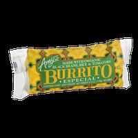 Amy's Burrito Especial