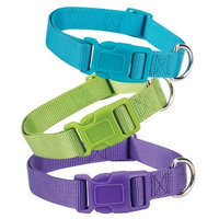 Zack & Zoey Nylon Dog Collar Parrot Green, Adjusts to Fit Necks 6