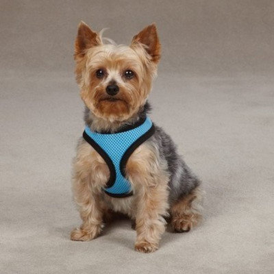 Casual Canine Pastel Mesh Pet Harness - Blue