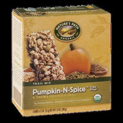 Nature's Path Organic Trail Mix Pumpkin-N-Spice Flax Plus Chewy Granola Bars - 6 CT