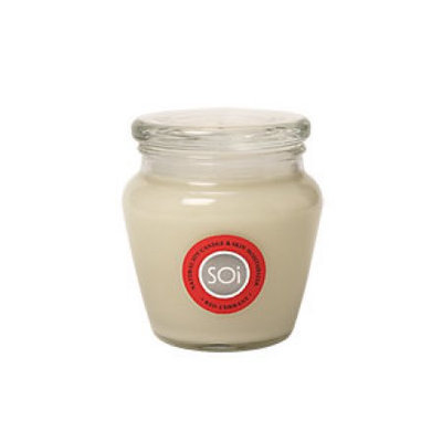 The Soi Company Red Currant Soy Candle 140 Hour Burn Time - 16 Ounces Candle(S) - Odor Elimination