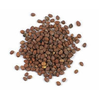 Organic Daikon Radish Seeds, 22 Oz