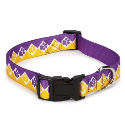 Casual Canine Polyester Collegiate Paws Dog Collar, 6-10-Inch, Purple/Yellow