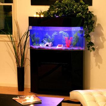 Advance Aqua Tanks Clear For Life Pentagon Aquarium Sapphire Blue, Size: 30-Gal (18W x 18D x 18H in.)