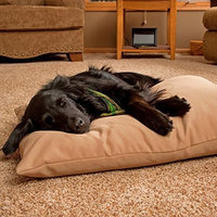Hidden Valley SuperSoft Max Gusset Poly-Suede Dog Bed