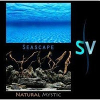 Seaview Seascape Double Sided Aquarium Background - 24 in. High - (Sold by foot)
