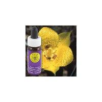 Flower Essence FES Quintessentials Yellow Star Tulip Supplement Dropper -- 0.25 fl oz