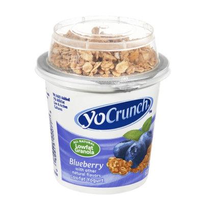YoCrunch Yogurt Blueberry Lowfat with Granola