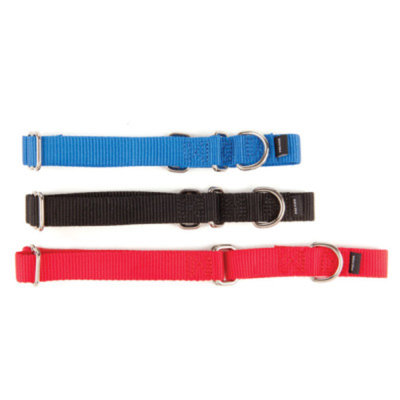 PetSafeA Slip-On Martingale Dog Collar