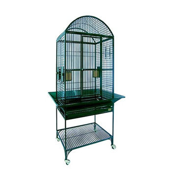 Avian Adventures Nina Dometop Bird Cage Color: Emerald Green
