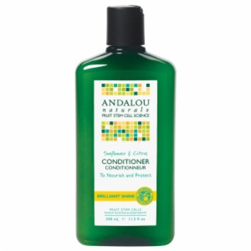 Andalou Naturals Healthy Shine Conditioner