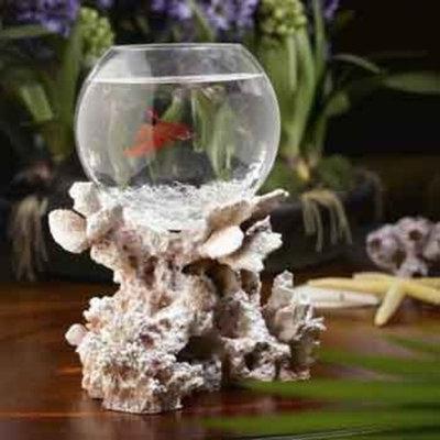Betta Treasures Blue Lagoon Betta Bowl in Fossilized Coral