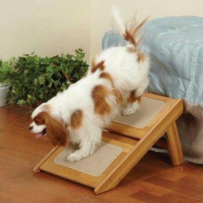 Pet Studio Renew Ramp Step for Pets