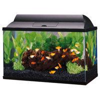 Top Fin 5.5 Gal Aquarium Starter Kit