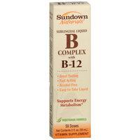 Sundown Naturals Sublingual B Complex with B-12