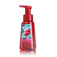 Bath & Body Works Bath Body Works Winter Cranberry 8.75 oz Anti-Bacterial Gentle Foaming Hand Soap