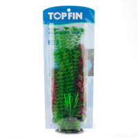 Top FinA Aquarium Plant Variety Pack