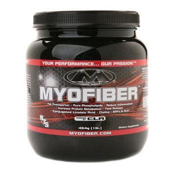 Muscleology Myofiber Powered by CLA