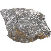 North American Pet Zebra Rock, 6