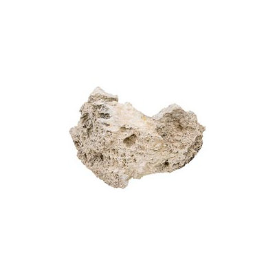 North American Pet Lace Rock, 8