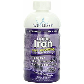 WELLESSE Liquid Mineral Supplement, Iron, 16 OZ (PACK OF 3)