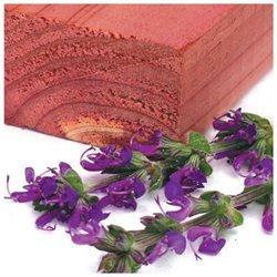 Cedar Fresh Fragrant Blocks Infused with Lavender (4 per Card)