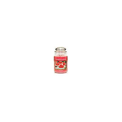 Juicy Watermelon Yankee Candle 22 oz
